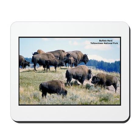 Yellowstone Buffalo Herd Mousepad