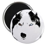 """Siberian Husky Sled Dog 2.25"""" Magnet (10 pack)"""