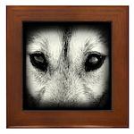 Wolf Pup Framed Tile Decor Sled Dog Framed Tile