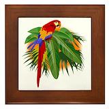 Parrot Framed Tiles