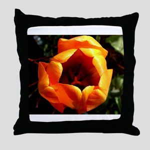 Inside Orange Throw Pillow