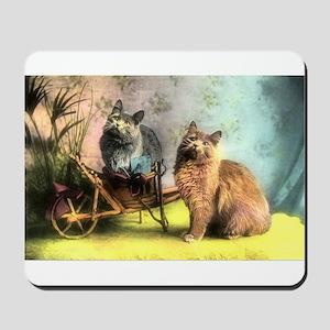 Cute Vintage Cats Mousepad