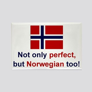 "Perfect Norwegian Magnet (3""x2"")"