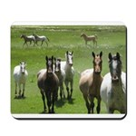 Appaloosa Mousepad