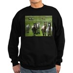 Appaloosa Sweatshirt (dark)