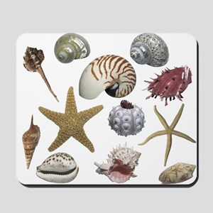 Shells Mousepad