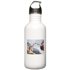 Creation of the Beagle Water Bottle