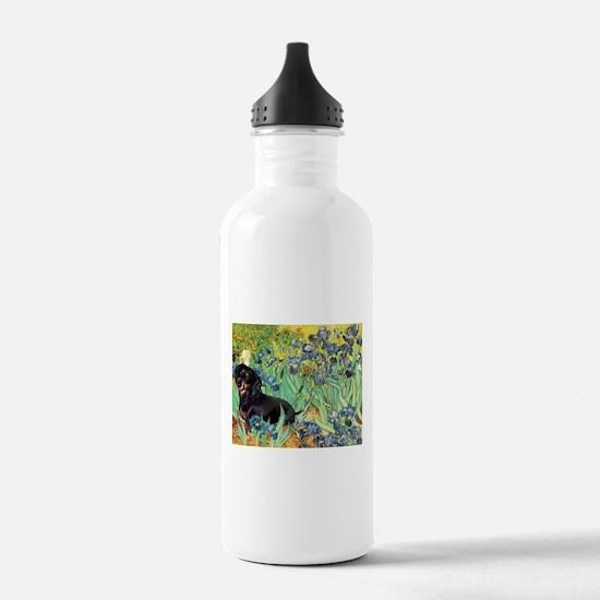 Irises & Dachshund (BT4) Water Bottle