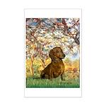 Spring / Dachshund Mini Poster Print
