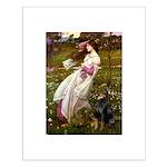 Windflowers / Doberman Small Poster