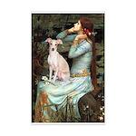 Ophelia / Italian Greyhound Mini Poster Print