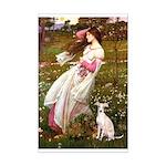 Windflowers / Ital Greyhound Mini Poster Print