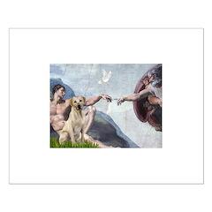 Creation/Labrador (Y) Posters
