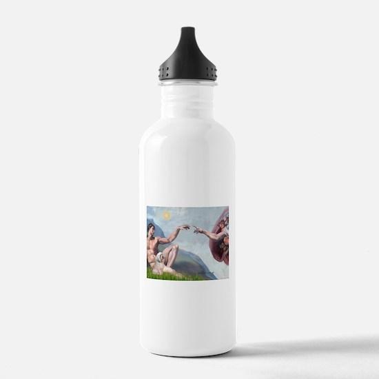 Creation / Lhasa Apso Water Bottle