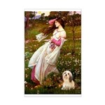 Windflowers / Lhasa Apso #4 Mini Poster Print