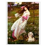 Windflowers / Lhasa Apso #4 Small Poster