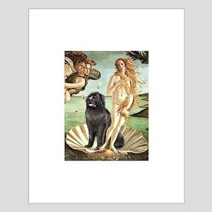 Venus & Newfoundland Small Poster