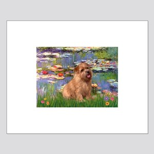 Lilies /Norfolk Terrier Small Poster