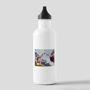 Creation/Pekingese(r) Stainless Water Bottle 1.0L