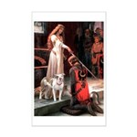 The Accolade / Pitbull Mini Poster Print