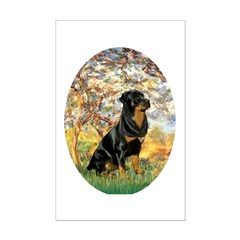 Spring / Rottweiler Posters