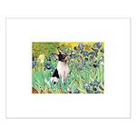 Irises / Toy Fox T Small Poster