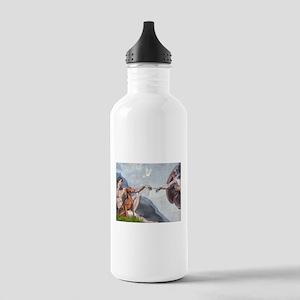 Creation / Weimaraner Stainless Water Bottle 1.0L