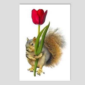 Squirrel Red Tulip Postcards (Package of 8)