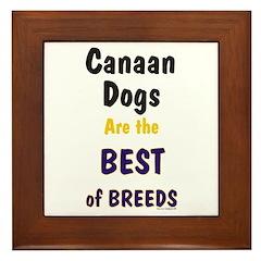 Canaan Dog Best Breed Framed Tile