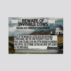 Invisible Cows Sign Rectangle Magnet