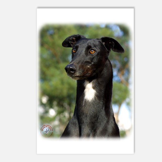 Greyhound 9R022-146 Postcards (Package of 8)