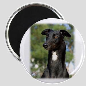Greyhound 9R022-146 Magnet