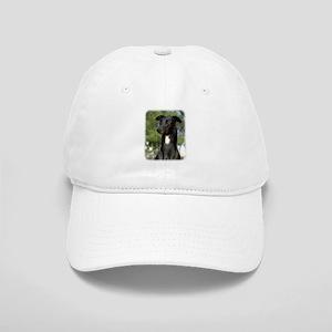 Greyhound 9R022-146 Cap