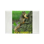 SQUIRREL! Rectangle Magnet (100 pack)