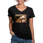 Don't Give Me Attitude! Women's V-Neck Dark T-Shir