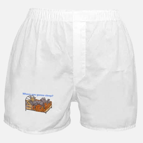 NC Blu Where you gonna sleep Boxer Shorts