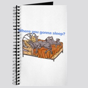NC Blu Where you gonna sleep Journal