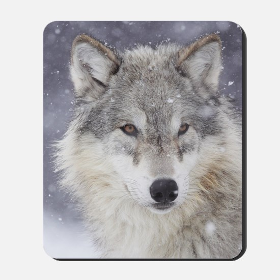 Snow Bound Mousepad