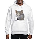 Apollo Hooded Sweatshirt