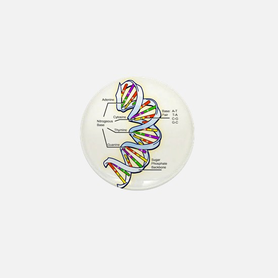 Cute Evolution intelligent design Mini Button