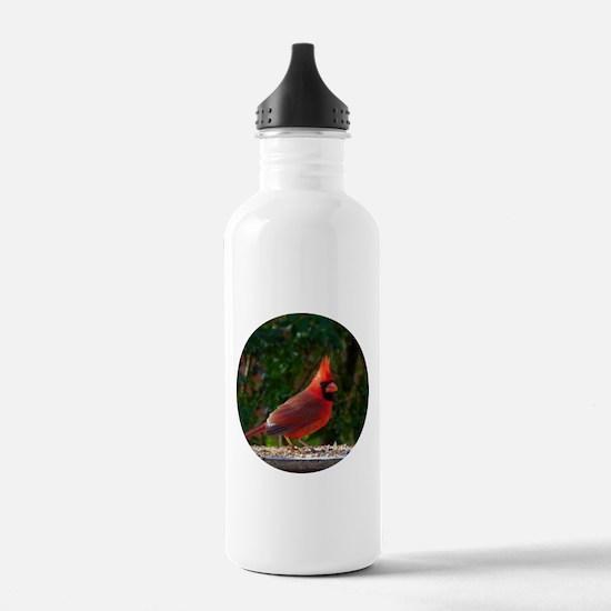 Cardinal Water Bottle