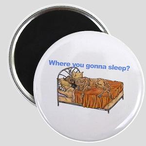 CBr Where you gonna sleep Magnet
