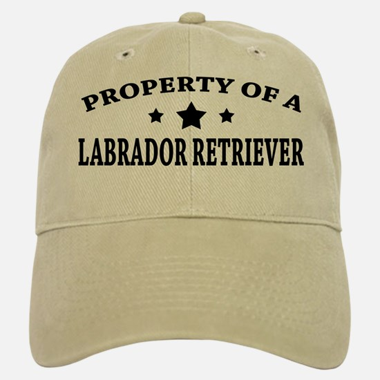 Property of Lab Baseball Baseball Cap