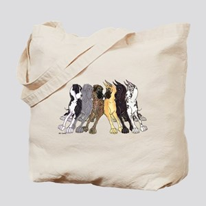 NC Split Show Tote Bag
