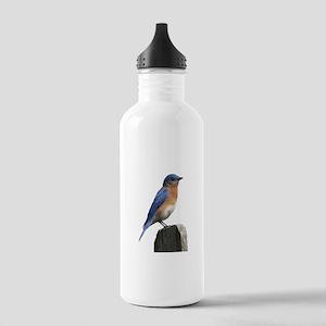 Eastern Bluebird Stainless Water Bottle 1.0L