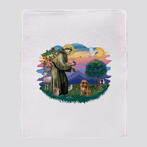 St Francis #2/ Brussels G Throw Blanket