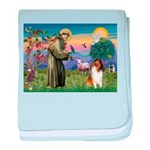 St. Francis & Collie baby blanket