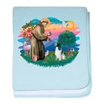 St Francis #2/ Eng Spring baby blanket