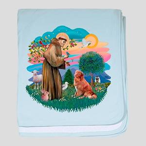 St.Francis #2/ Nova Scotia D baby blanket
