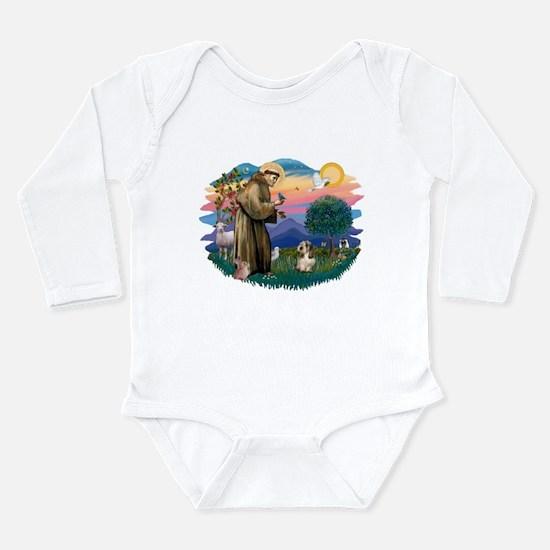 St Francis #2/ PBGV #4 Long Sleeve Infant Bodysuit